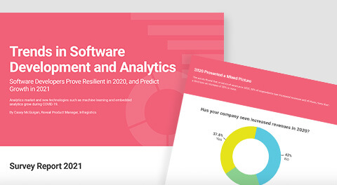 Trends in Software Development and Analytics survey report