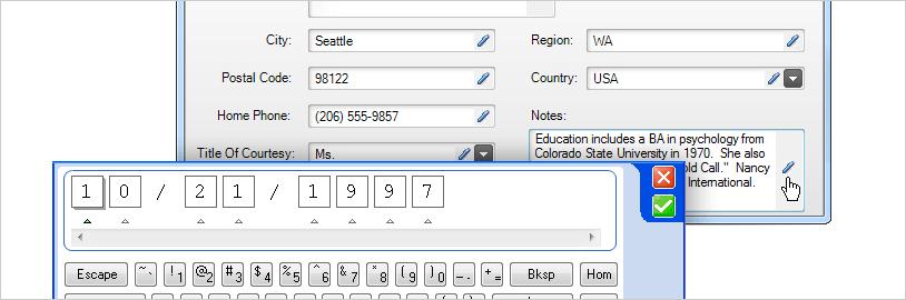 WinForms Ink Provider Input Panel