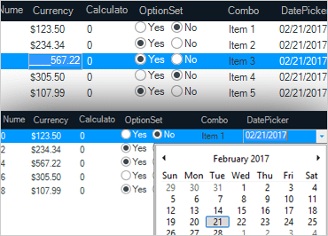 WinForms Grid Formula Builder