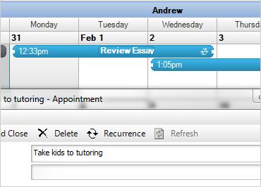 WinForms Schedule Calendar Functionality