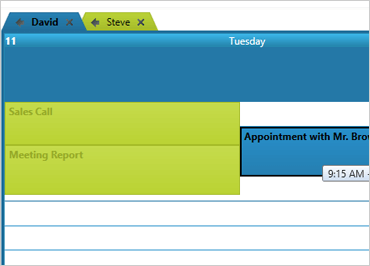 WinForms multiple resource calendars in a single view